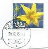 Postage Stamp - Switzerland (Ray's Photo Collection) Tags: scan scanned postage stamp timbre briefmarke switzerland schweiz suisse swiss flower yellow