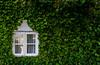 Fenêtre secret - Secret Window (MichelGuérin) Tags: 2017 exterior extérieur fenêtre feuille islande leaf lightroomcc michelguérin nikon nikond500 reykjavik window höfuðborgarsvæðið is