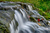 See the Sound of the Falls (tquist24) Tags: bonneyvillemillcountypark hdr indiana littleelkhartriver nikon nikond5300 geotagged leaf leaves longexposure river rocks water waterfall bristol unitedstates