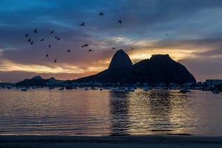 Revoada na Praia de Botafogo - Rio de Janeiro