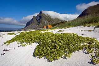 Vikten Beach with Grass and Clouds