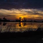 Sunrise Along I5 thumbnail