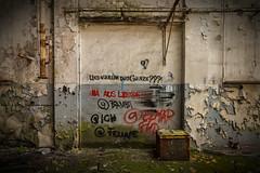 What's all that in aid of...? out of love! (michael_hamburg69) Tags: lostplace offthemap abandonedplace urbanexploration urbex phototourmit3daybeard3tagebart verfall decay beautyofdecay undwarumdasganzenaausliebe whatsallthatinaidofoutoflove streetart urbanart quote spruch 💕