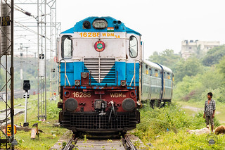 Raipur ALCO WDM3A catches the attention of a shepherd