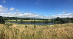 LWT Brockholes, the view from the Ribble Lookout.