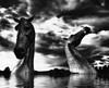 Kelpies Rising (tiggerpics2010) Tags: equineart modernart publicart blackandwhite andyscott sculpture falkirk scotland forthandclyde canal rivercarron drama surreal foreboding thehelix