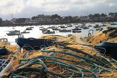 Roscoff harbour