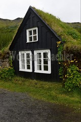 40081378 (wolfgangkaehler) Tags: 2017 europe european iceland icelandic island south southern skogarvillage skogarfolkmuseum museum traditionalarchitecture traditional turfhouse turfhouses earth grass building buildings sod sodhouse sodhouses sodroof exterior nopeople