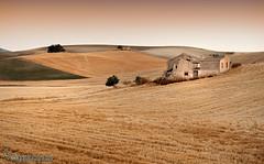 Campos de Alhama de Granada (Lucas Gutiérrez) Tags: campo alhamadegranada dedil cereales verano cortijoabandonado granada granadanatural lucasgutierrezjimenez