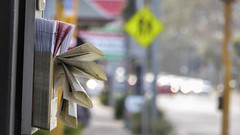 Messy Brochures (Theen ...) Tags: bokeh brochures busstop cars fan footpath glenosmondroad holder messy pink signs traffic trafficlights white yellow