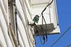 Glass Insulator used for service drop to house (monon738) Tags: insulator glassinsulator electricity electric indiana fortwayneindiana allencounty pentax k5 glass power powerlines utilitylines smcpda300mmf40edifsdm