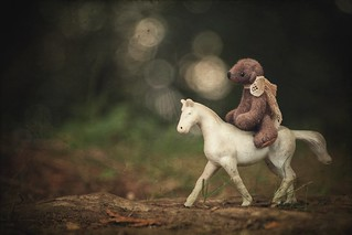 riding bear-back