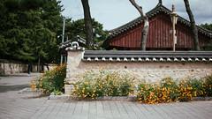 JR9_8825-4 (jryoon2) Tags: nikon camera city traditional village ville photo