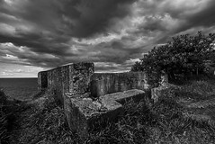 DSC00976 (Damir Govorcin Photography) Tags: sky clouds wide angle blackwhite watsons bay sydney zeiss 1635mm sony a7rii perspective creative composition trees water harbour