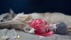 Cat & Miss Mouse.💖