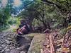 Chavayan to Sumnanga Trail (ferdzdecena) Tags: sabtang batanes ironwulf