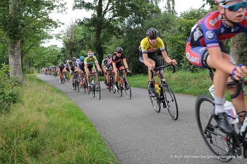 Omloop Vlaamse gewesten (296)