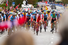 UCI Road World Championships 2017 (TimOve) Tags: 2017roadworldchampionships sykkelvm2017 bergen norway cycling meneliteroadrace sykling mesterskap 2vm norwegianflags crowd celebration competition salmonhill laksebakken