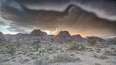 Summer Storm (magnetic_red) Tags: storm clouds sunset summer redrockcanyon nevada desert dramatic verga rain plants valley mountains vista beautiful publiclands blm americanwest