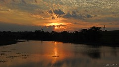 Por do Sol - Ivinhema, Brasil (Emerson Bordim) Tags: nature natureza entardecer brazil