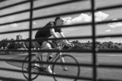 Cyclist At Preston Park Velodrome (grahambrown1965) Tags: velodrome cyclist bicycle ricohimagingcompanyltdpentaxk3ii ricoh pentax k3ii pentaxk3ii 21mm limited limitedlens 21mmlimitedlens pentax21mmlimitedlens hd blackandwhite monochrome bw bwfilter bw090filter 090 preston park prestonpark sussex eastsussex cloud clouds railing railings fence stmarys saintmarys stmaryschurch saintmaryschurch chapel