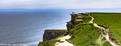 Cliffs of Moher Ireland-12 (Yasu Torigoe) Tags: viewoftheruggedcliffsofmoherinclarecountyireland