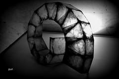 linhas retas e curvas! (puri_) Tags: vidro aço peça museu tranparencia luz sombra