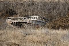 Abandonné, pointe de la Fosse (Jacques Borruel) Tags: bateau épave bois navire abandon vieux ruine