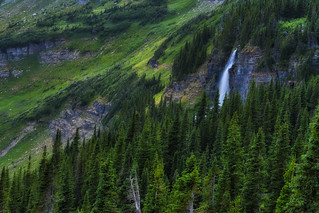 Waterfall Down Deep in the Valley - Glacier National Park