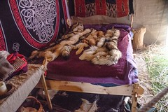 Viking Village 08 (allybeag) Tags: largs vikingvillage crafts historical reenactment