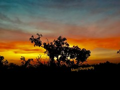 A colourful evening. iPhone 6s (Meraj.) Tags: iphone asia bangalore southindia sky beautiful karnataka india indian apple iphonephotography iphone6sphotography iphone6s landscape colours colourful evening