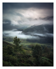 Morning Rise (Dylan Nardini) Tags: loch morning trool nikon trees galloway forest dawn mountains glentrool dumfries scotland d810 mist clouds