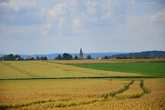 summer moods (JoannaRB2009) Tags: summer mood landscape view weather sky clouds fields golden trail path nature town church tower horizon hesse hessen germany deutschland blue gold yellow building architecture