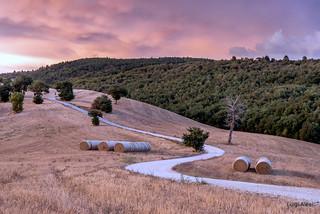 San Severino Marche - strada di campagna