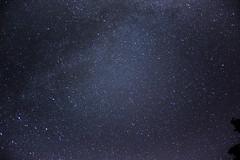 Summer Stars of the northern hemisphere (Notquiteahuman1) Tags: star stars milkyway astro nightsky constellation sky dark blue bright contrastprocessing tree 50mm longexposure contrast dim alone trip hesse hessia sandplacken hotel parking trails nikkor50mm18afd 15s nikond610 night estrela noite céu sterne himmel nachthimmel astronomie