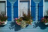 Windows and flowers. Lake Pepin. September, 2017 - L1116982 (erlin_1_color) Tags: 2017 color daytrip house lakepepin leicam9 september wi