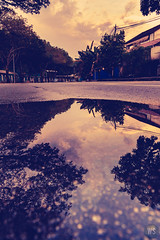 Reflection (tomsweisiong) Tags: reflection photograpghy picture photo exposure 2017 flickr yahoo