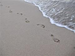 foot prints (kenjet) Tags: oahu beach sand sandy island waikiki waikikibeach hawaii foot prints footprints walking water ocean pacific pacificocean wave waves