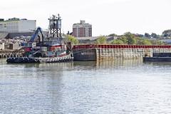 r_170929157_beat0060_a (Mitch Waxman) Tags: alloccorecyclingltd dugabo newyorkcity newtowncreek simsmetal tugboat newyork