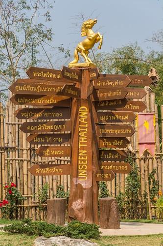 mae fah luang - thailande 46