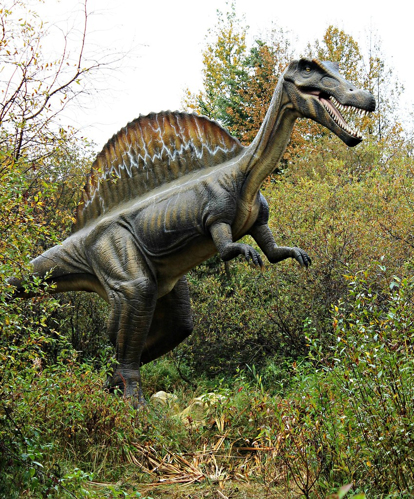 The world 39 s best photos of dinosaurs and spinosaurus flickr hive mind - Lego dinosaurs spinosaurus ...