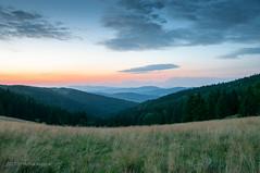 Przełęcz Puchaczówka (MichalKondrat) Tags: natura masywśnieżnika kotlinakłodzka pejzaż chmury drzewa zachódsłońca polska 2017 sierpień przełęczpuchaczówka góry sudety wieczór dolnośląskie przyroda zieleń krajobraz