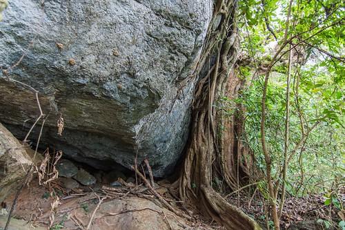 ramkhamhaeng national park - thailande 20