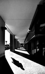 (primo fusari) Tags: crisi ombra esperimenti