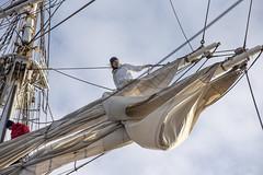 Furling the sails on Christian Radich, Norway (Ingunn Eriksen) Tags: furlingthesails christianradich norway sail furling tallship nikond750 nikon