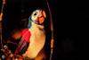 ACH! (Mr__Twitchy) Tags: adventureland anaheim disneyland disneylandresort enchantedtikiroom indianajones junglecruise orangecounty southerncalifornia themepark tourism travel waltdisney california unitedstates