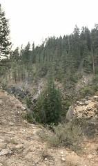 Falls Creek Falls Hike (TerriJane01) Tags: fallscreekfalls methow cascades pacnw