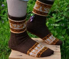 2017-08-04 Kanteletar (2) (hepsi2) Tags: tds2017 tds2017kanteletar kanteletar socks sukat colorwork strandedknitting
