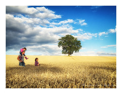 Summer Holidays (ben_wtrs79) Tags: summer days corn field exploring me and my girls tree warwickshire olympus omd em1 1240 f28 pro