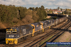 8210, 8204, 8255 & 8233 at Warabrook (Les 'LowndesJ515' Coulton) Tags: 8210 8204 8255 8233 82class coco emd electromotivedivision pn pacificnational coaltrain coalroads huntervalley warabrookstandard gauge freightcorp ca62